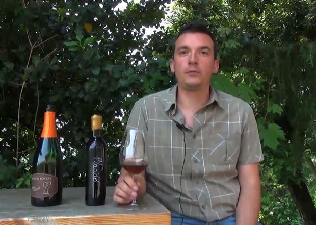 vin santo di brognoligo 2