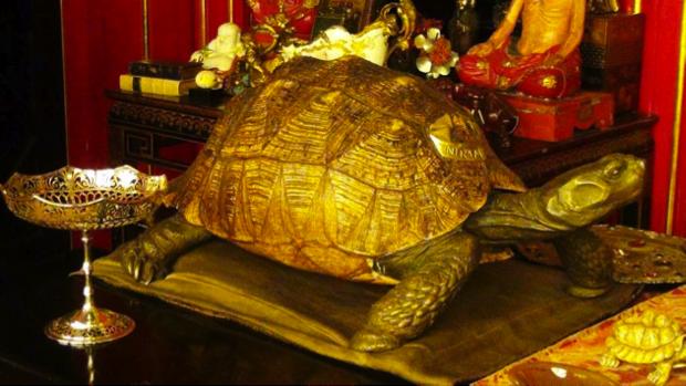 museo il vittoriale sul lago di garda 10
