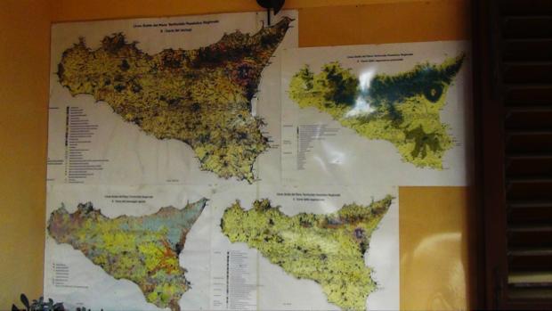 Legallinefelici sicilia agrumi 7