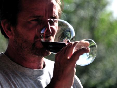 vini parovel carso triestino 11