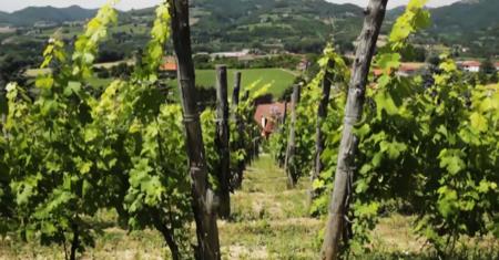 el burg dj angurd borgo monferrato 007