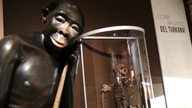 homo sapiens evoluzione al MUDEC milano 003