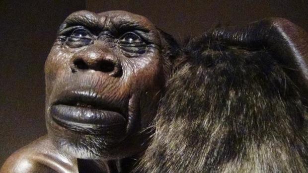 homo sapiens evoluzione al MUDEC milano 005