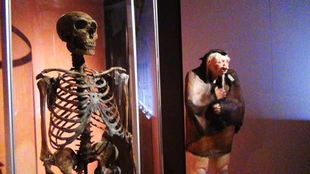 homo sapiens evoluzione al MUDEC milano 013