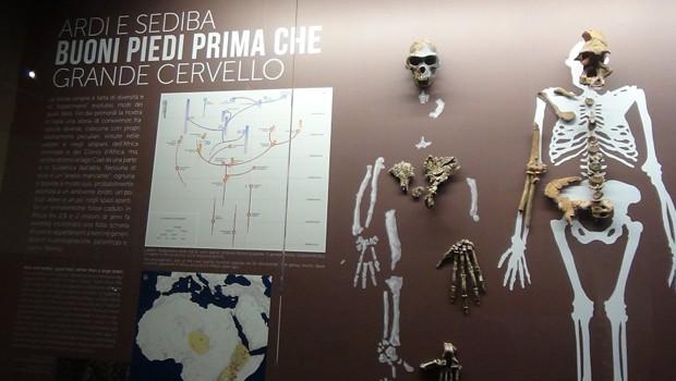 homo sapiens evoluzione al MUDEC milano cop