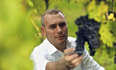 tintilia del molise vino Cipressi 005