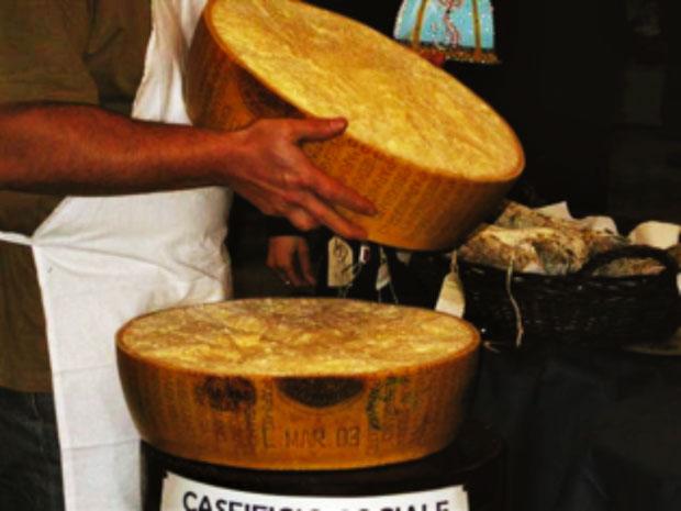 Vacca Bianca Modenese, Presidio Slow Food dell'Emilia Romagna