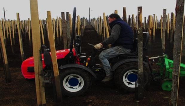 Mini-trattore, l'innovazione eco-compatibile nelle vigne siciliane