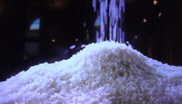 Come si lavora e cuoce il riso giapponese