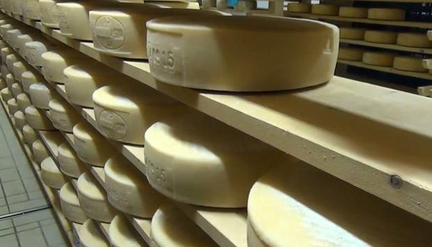 Perenzin, nel trevigiano un mondo di bontà intorno al formaggio