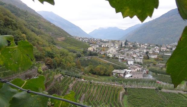 Il turismo gastronomico in Valtellina: consigli e scoperte