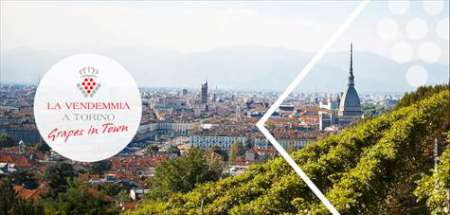 Vendemmie da Torino al Canavese