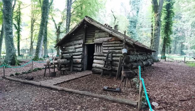 Museo naturalistico della Foresta Umbra, Ambiente e Uomo nel Gargano