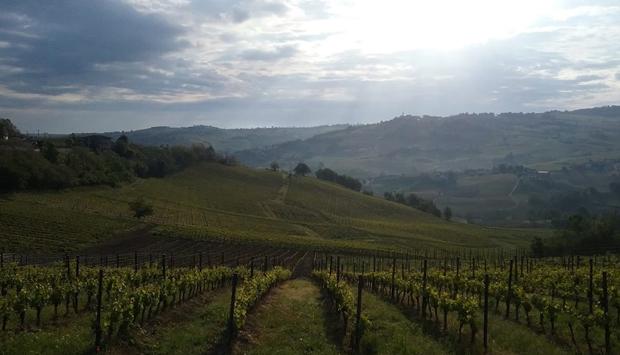 Calatroni e Mon Carul, storie e leggende da bere dall'Oltrepò Pavese