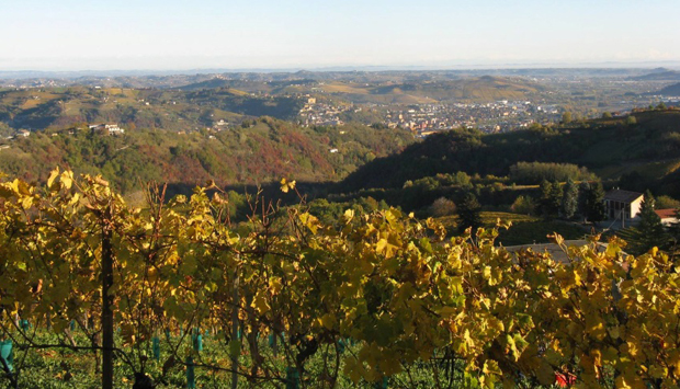 Cantina Pianbello, dalla provincia di Asti le bollicine dell'Alta Langa