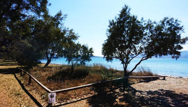Le aiuole di Narciso Marino a Milos, verde pubblico come bene culturale