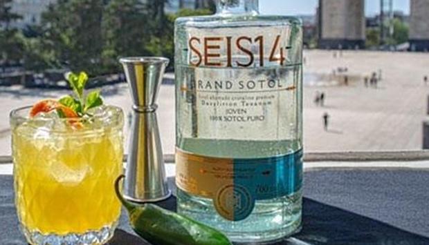 Sotol Seis14, distillato ancestrale messicano da pianta selvatica locale