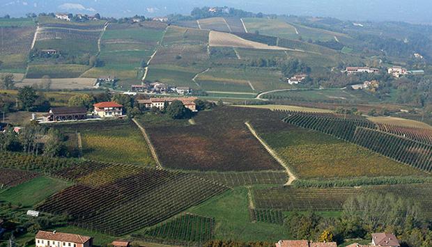 Stella, un secolo di vini del Monferrato da uve autoctone del Piemonte