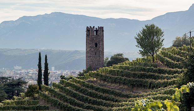 Tenuta Rottensteiner a Bolzano, vini altoatesini scolpiti nella roccia