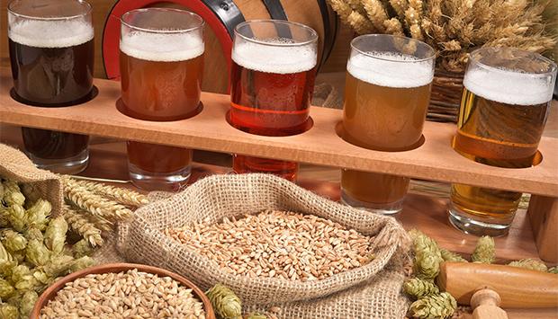 La Stecciaia, birra artigianale biologica di filiera delle Crete senesi