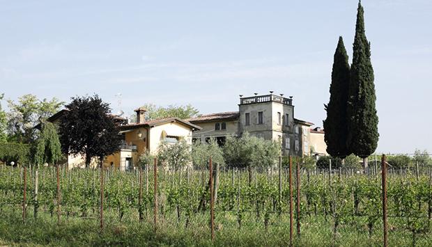 Cantrina, vini artigianali bio del Garda come libero esercizio di stile